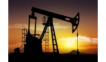 US President Donald Trump calls upon oil cartel to slow down