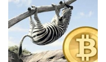 AFRICAN COUNTRIES RECORD AN INCREASE IN DEMAND FOR BITCOIN ON P2P SITES