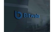 Bitwala completes Series A funding with Sony backing