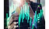 Crypto market data: why Bitcoin on the rise