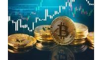 Cryptocurrencies post mixed dynamics