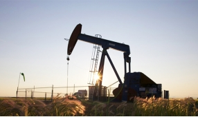 Experts' forecasts about the crude oil prices in 2016