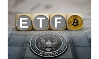 More data on Bitwise/NYSE Arca bitcoin-ETF came to hand