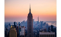 Next BitLicense in New York State goes to Tagomi crypto broker