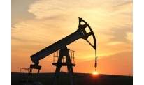 Oil prices follow different trends