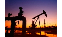 Oil reserve rise pushes price down
