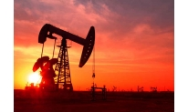 Oil shows slight fluctuations on Friday