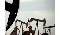 OPEC + WILL INCREASE QUOTAS FOR OIL PRODUCTUON