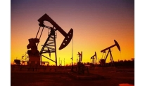 Oil prices up on API reports