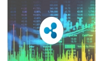 Ripple enters into xRapid partnership agreements with crypto exchanges