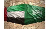 Saudi Arabia and UAE consider joint cryptocurrency