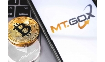 Trustee of  Mt Gox makes decision on civil rehabilitation requests